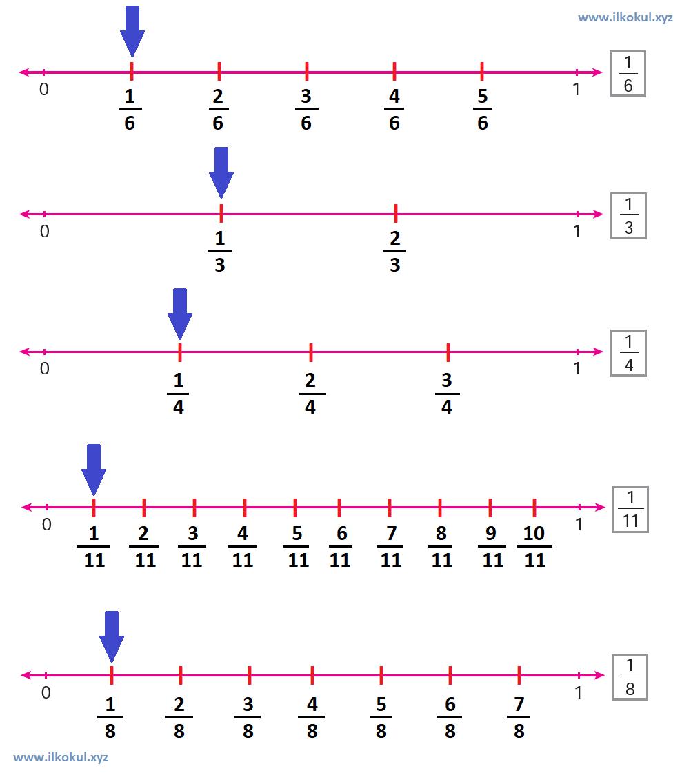 Kesirleri sayı doğrusunda gösterme